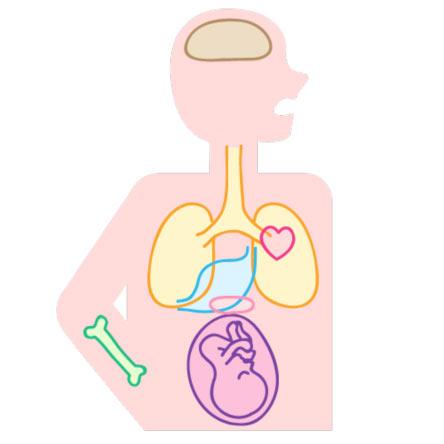 全身に深刻な影響を及ぼす「歯周病菌」